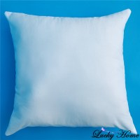 Online Get Cheap Throw Pillow Inserts -Aliexpress.com ...