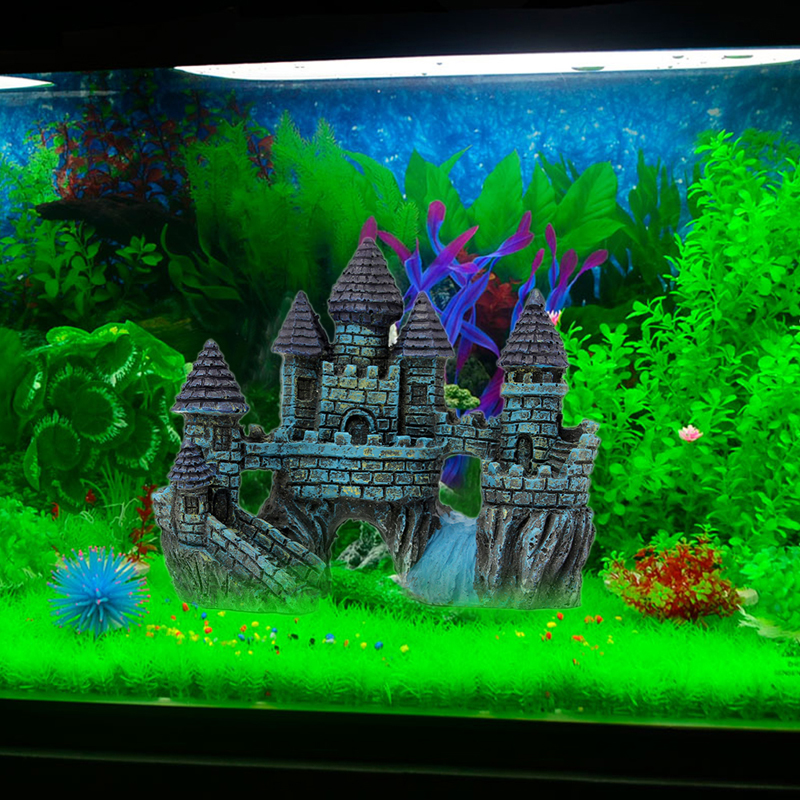 Popular Fish Aquarium Design