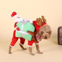 Christmas Costumes for Large Dogs Promotion-Shop for ...