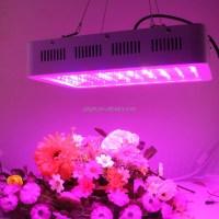 Uv led grow light  Economical home lighting