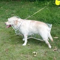 Labrador Clothing Reviews - Online Shopping Labrador ...