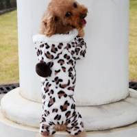 cheap dog pajamas yorkshire terrier pug clothes winter ...