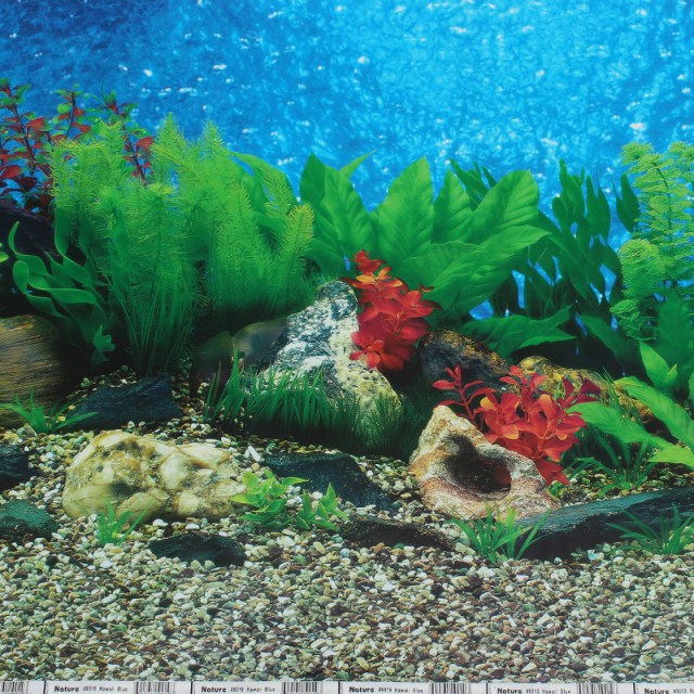 aquarium background paper