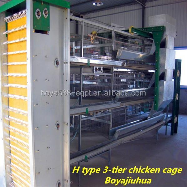 ... poultry farming business cash flow projection sample for business plan