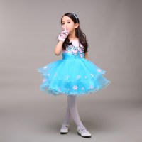 Ice Blue Pink Little Girl Pageant Dress With Flowers Short ...