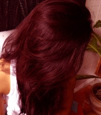 Red Wine Hair Color - Semi Permanent Hair Colors - Buy Red ...