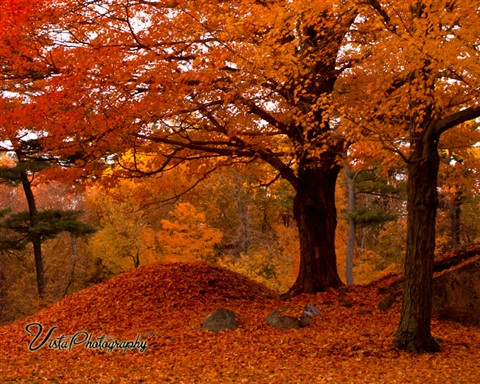 Fall In Maine Wallpaper Img 0509 Jeff Foliage Galleries Digital Photography