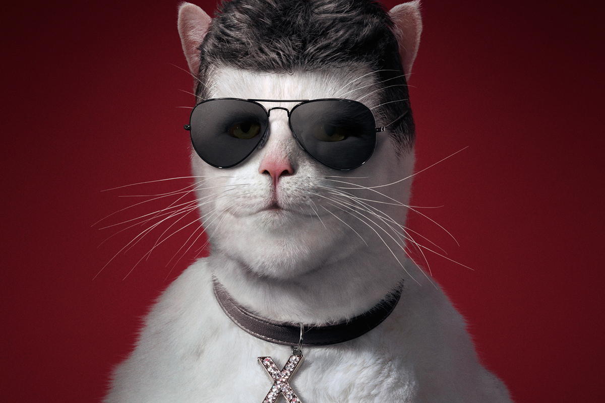 Simon Cowell Literally Becomes A Fat Cat In Sunday Times