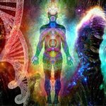 How To Survive As A Multidimensional Being In A Limited Consciousness