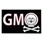 THE GMO SCRAPBOOK: ARGENTINE STUDY LINKS GMOs AND CANCER INCREASE