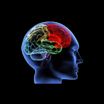 The human brain has never been logical… its a holographic pattern processor…