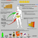 The Effect of High-Fructose Corn Syrup Consumption in the US