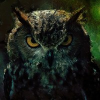 Owlish Tendencies - Owl Wildlife Art