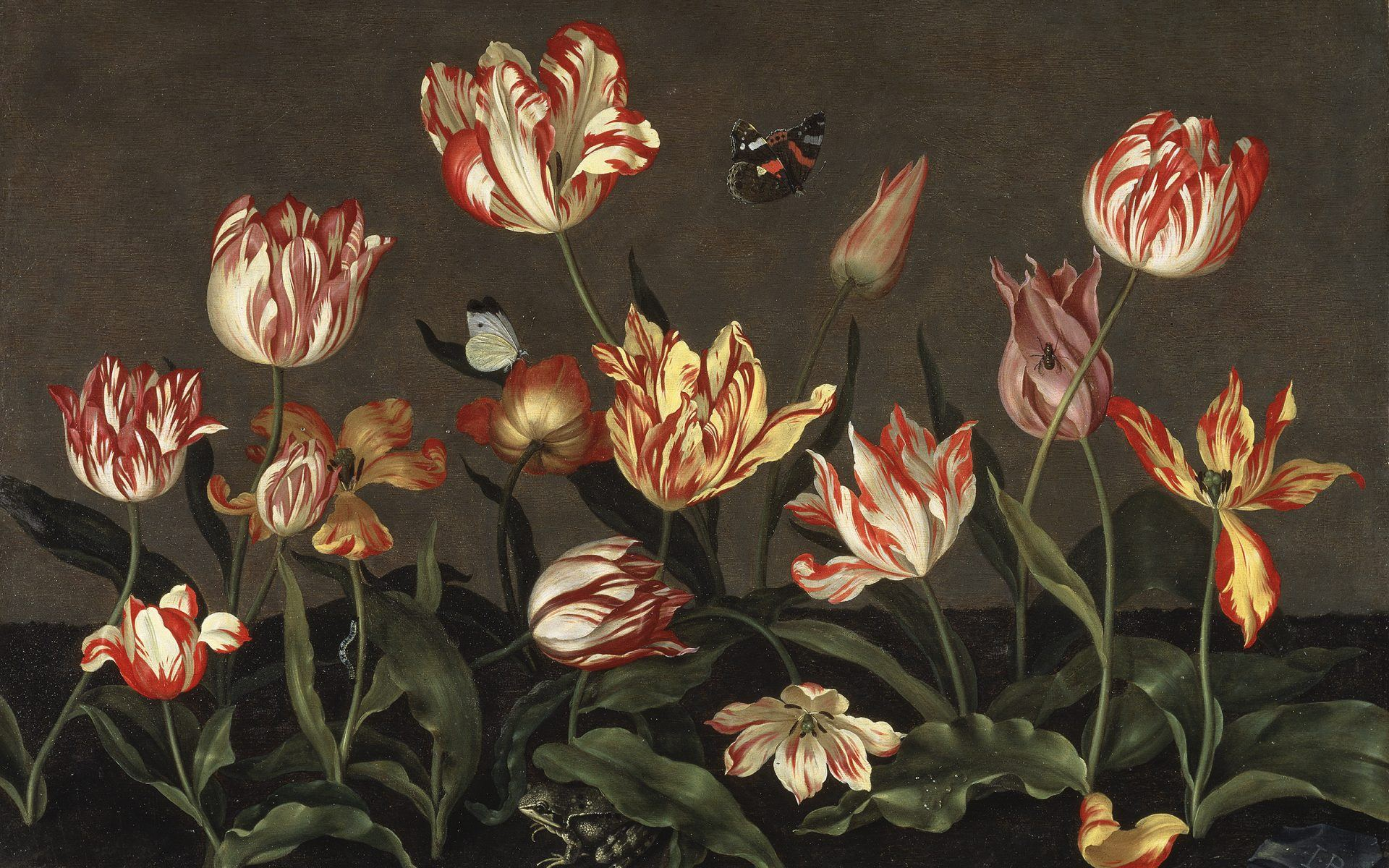 Tracing The Tulip Through 4 Centuries Of Art And Design Galerie