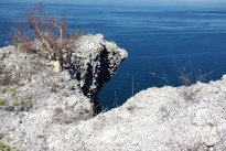 erosion or rock fall at edge of sea cliff