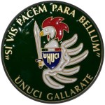Logo unuci Gallarate 2
