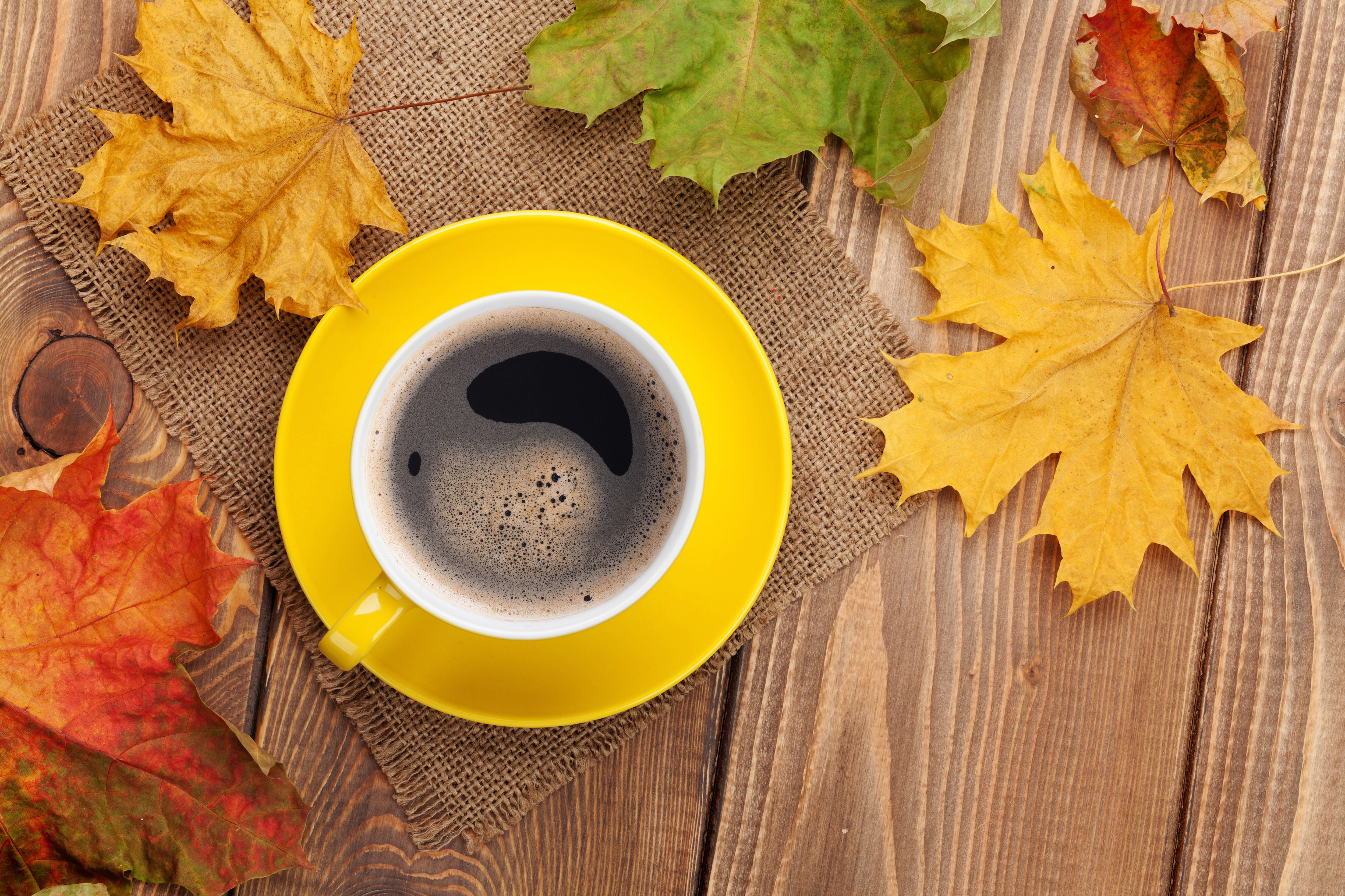 Fall Border Wallpaper For Desktop Fall Background With Leaves And Cup Of Coffee Gallery