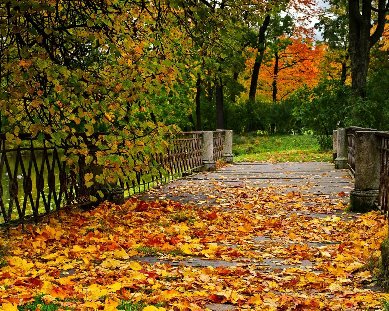 Free Fall Wallpaper For Computer Fall Bridge Background Gallery Yopriceville High
