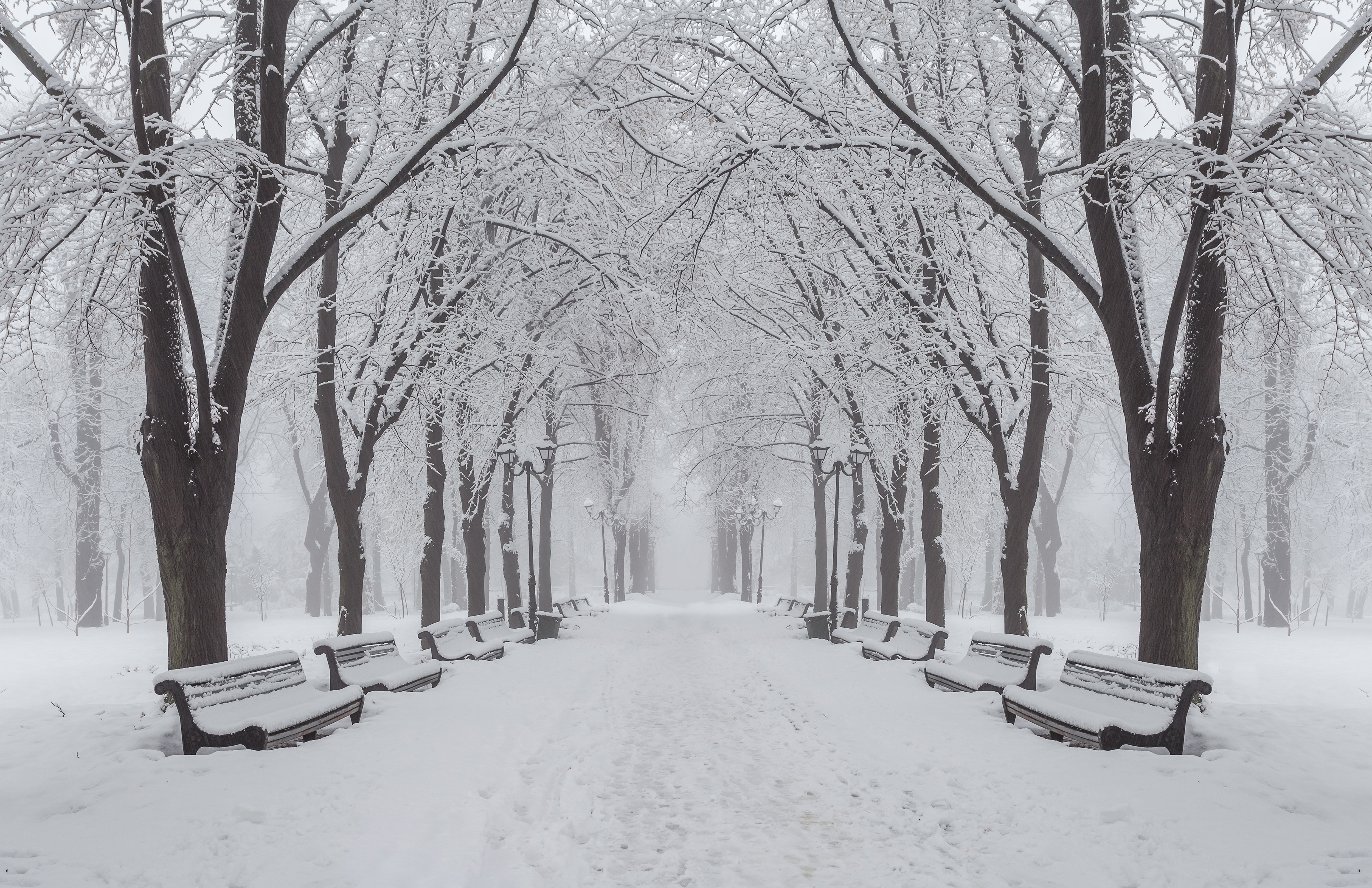 Christmas Wallpaper Snow Falling Winter Park Background Gallery Yopriceville High