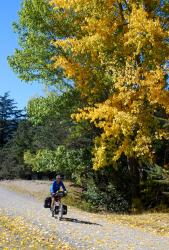 Classic autumn cycling