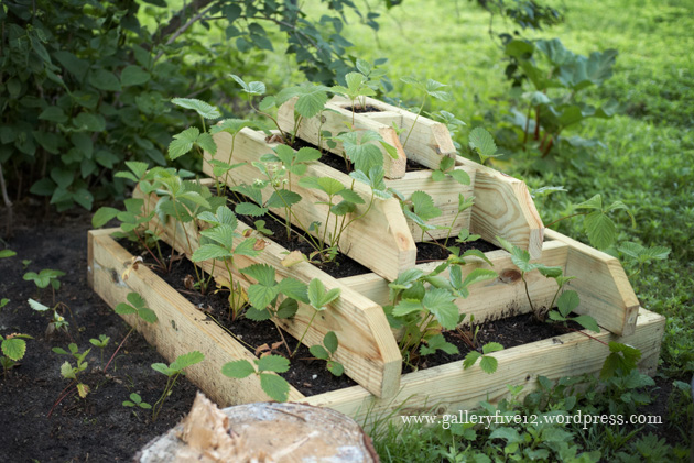 Pyramid Strawberry Planter | Gallery 512 Boutique