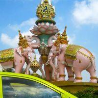 Chasing Pink Elephants in Bangkok