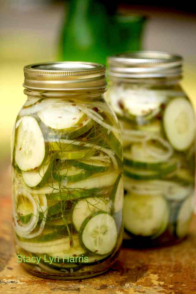 dill pickles gooseberry refrigerator jam basic refrigerator pickling ...