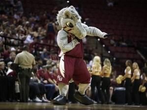 Cimarron New Florida State Seminoles Mascot
