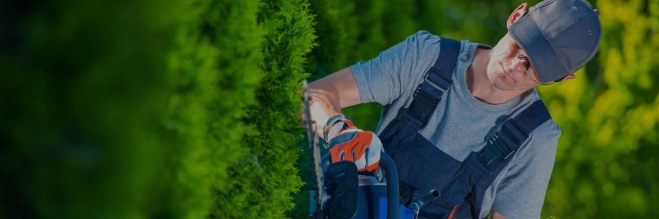 A kert pihenésre való, a munkát bízza ránk