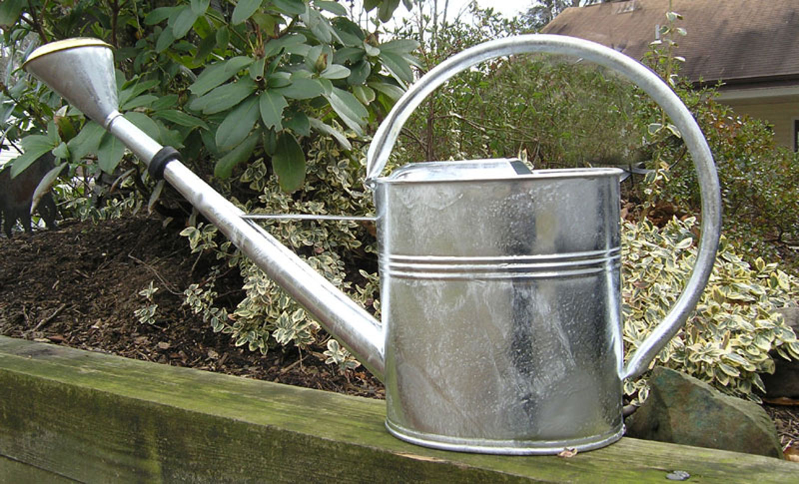 Grote Gieter Large Galvanized Watering Can Atcsagacity