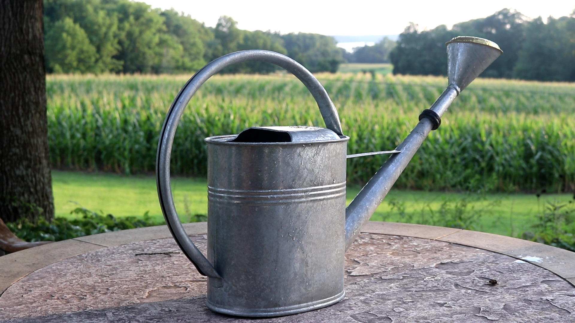 Grote Gieter Large Galvanized Watering Can 2 3 Gallon Garden Artisans