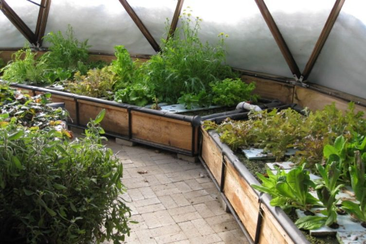 Great Hydroponics Ideas But Garden Culture Magazine Build Your Own Geodesic Greenhouse - Garden Culture Magazine