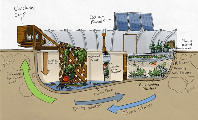 The Repurposed Hydro Micro Farm