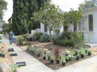 Gardenerd: Organic Edible Gardening | Drought Tolerant Design