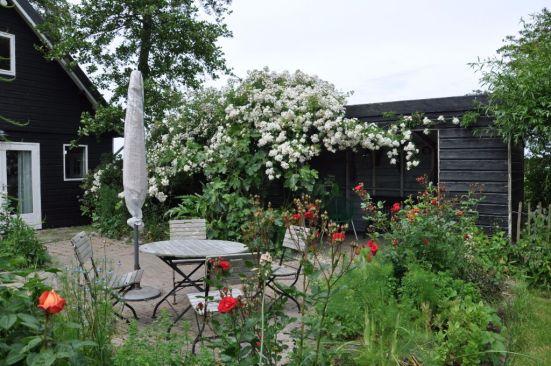 juni-tuinhuis-met-huisje-en-recht-seagull