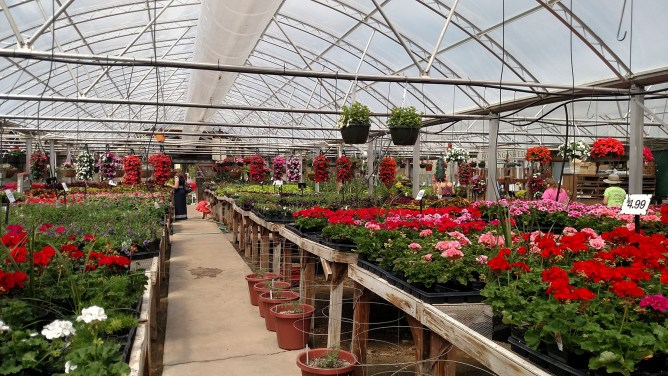 Garden Adventures – Burlington Garden Center