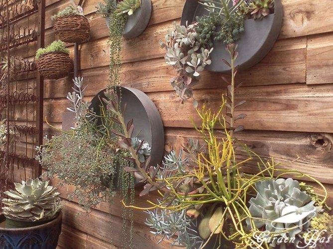 Garden Hat Adventures - Burlington Greenhouse Succulent Display