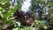 Garden_Hat_Garden_Adventures_Mitchell_Park_9_36