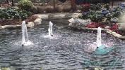 Garden_Hat_Garden_Adventures_Mitchell_Park_Show_Dome_6