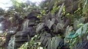 Garden_Hat_Garden_Adventures_Mitchell_Park_9_13