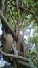 Garden_Hat_Garden_Adventures_Mitchell_Park_9_38