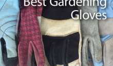 Best Gardening Gloves: Guide & Recommendations