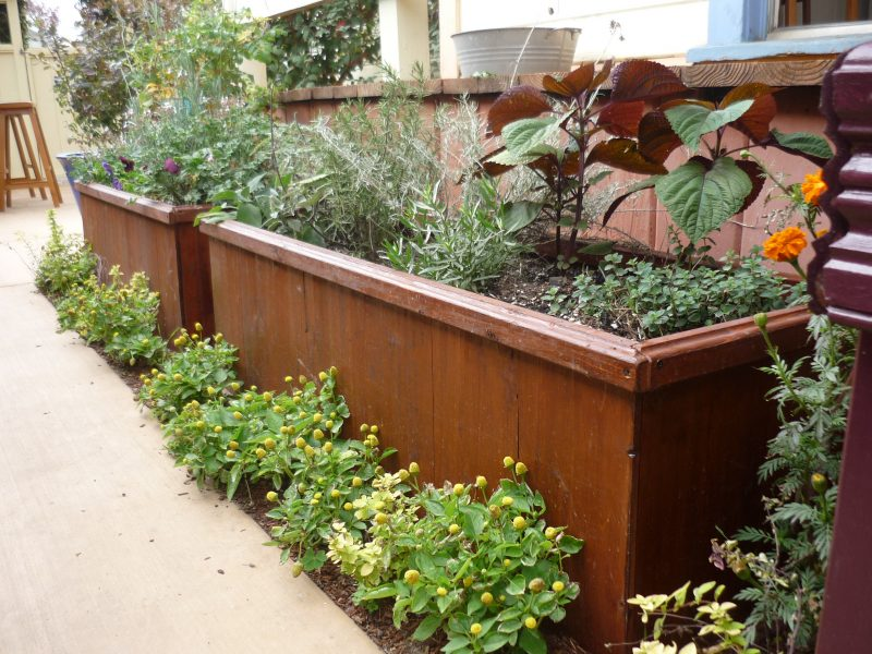 Big Garden Planters Pssst Want A Very Handsome Planter Box Garden Rant