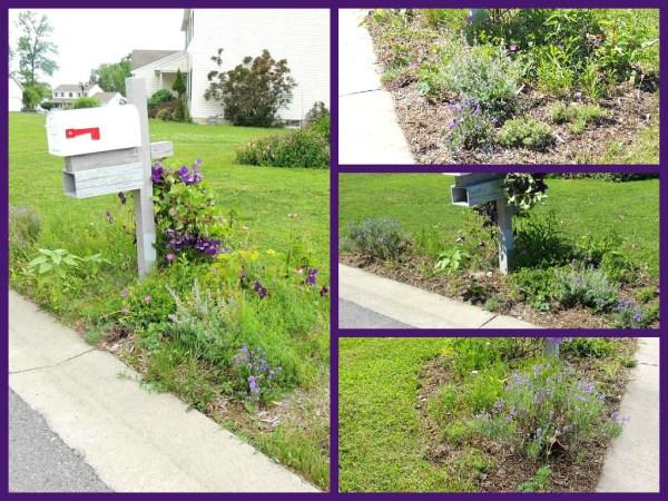 mailbox garden collage
