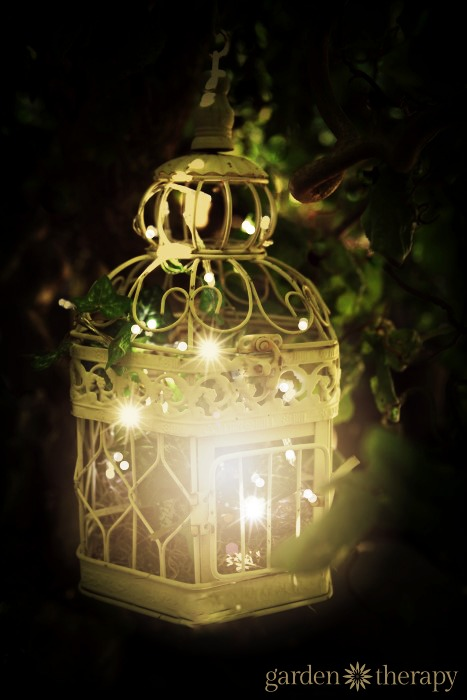 Fall String Lights Wallpaper Weddings Birdcage Outdoor Garden Light With Warm White String