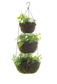 Three Tier Hanging Herb Planter - Garden Therapy