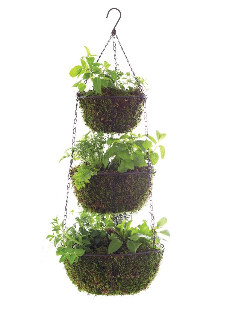 Imposing Three Tier Hanging Herb Planter Garden Rapy Hanging Herb Garden Ikea Hanging Herb Garden Kitchen garden Hanging Herb Garden