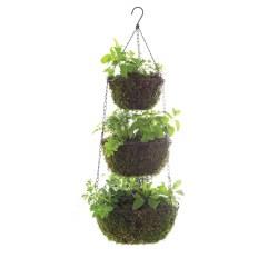 Small Crop Of Hanging Herb Garden