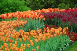 Longwood Gardens, Brandywine Valley