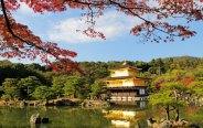 Golden temple Japan